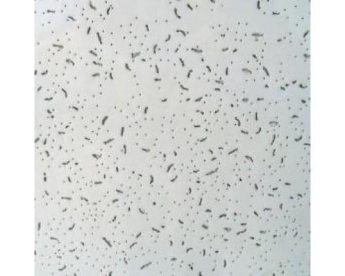 Ангара  Потолочная плита 600*600*7мм (уп-24 шт)